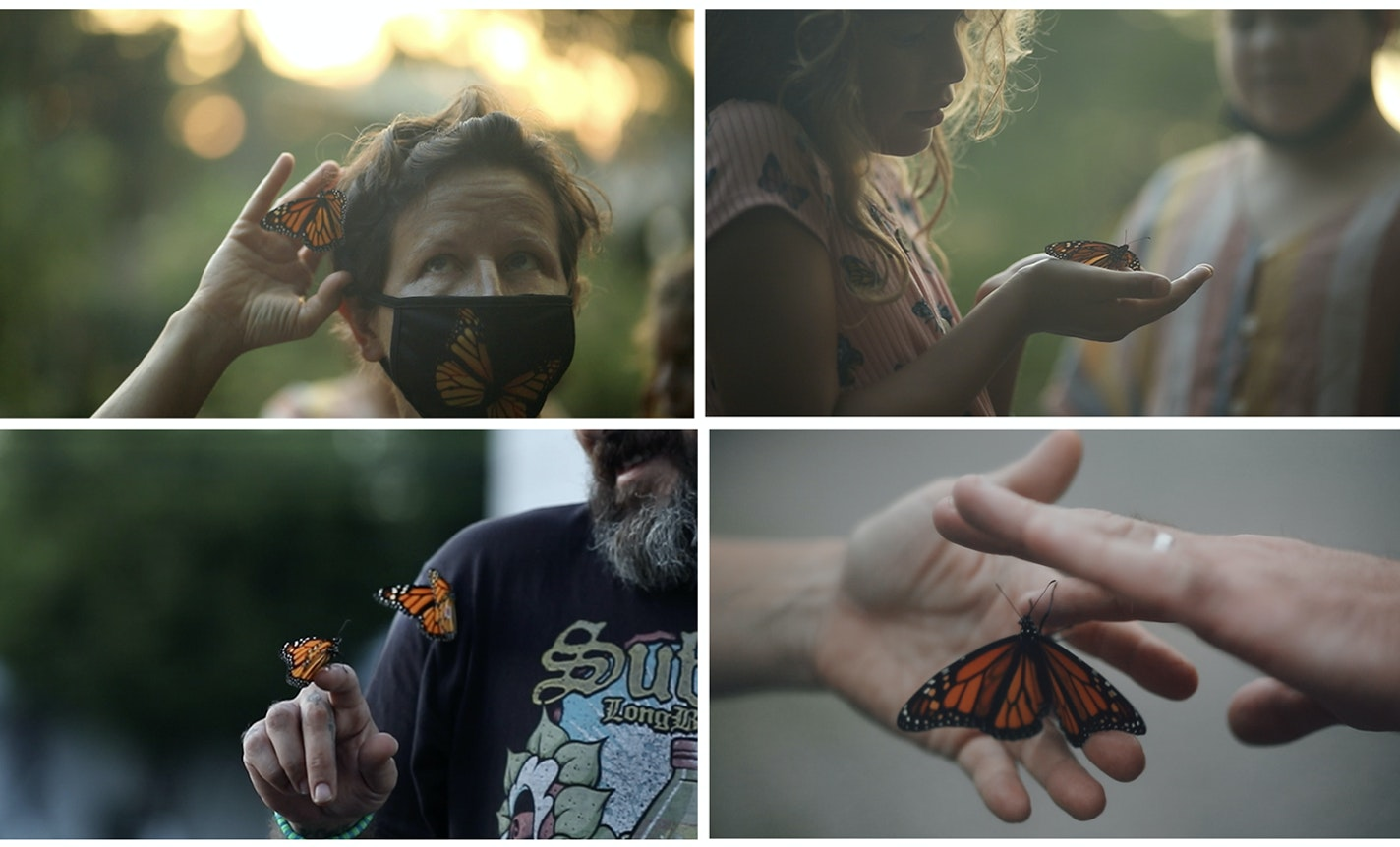 Monarchs for Mourning, Healing, and Well-Wishing
