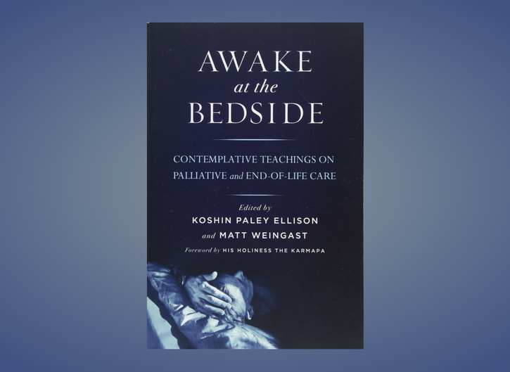 Awake at the Bedside: Koshin Paley Ellison podcast